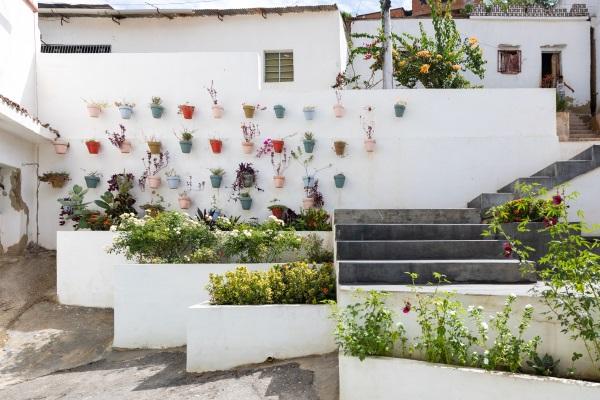 Paseo Las Flores
